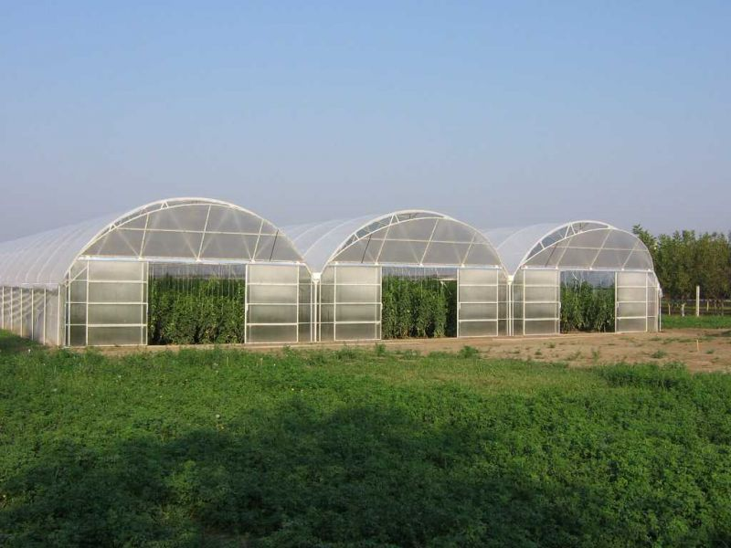 Public Call for allocation of greenhouses